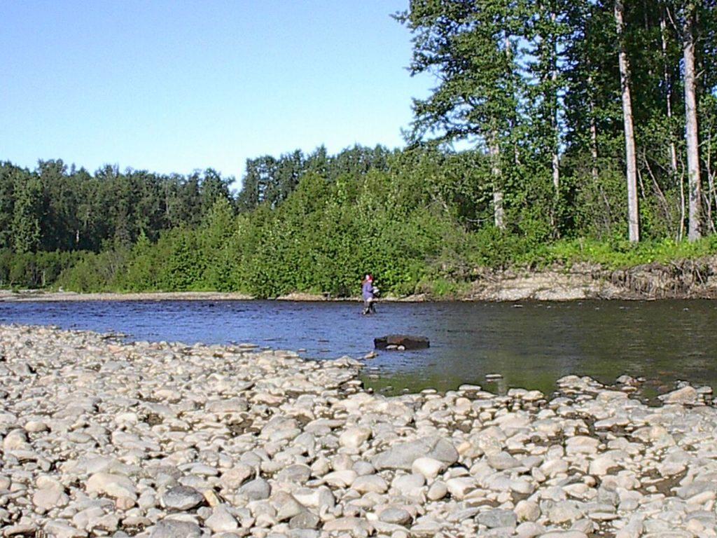 Chuitna River
